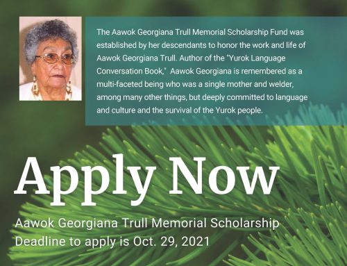 Native Cultures Fund Scholarship Opportunities